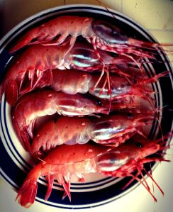 Steamed Monterey Bay Spotted Prawns